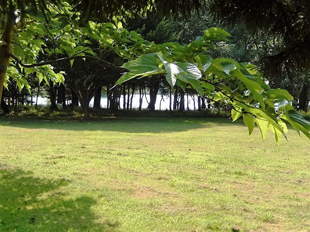 Exceptionnel et unique, à proximité de Pont l'Abbé, magnifique propriété sur une île privée